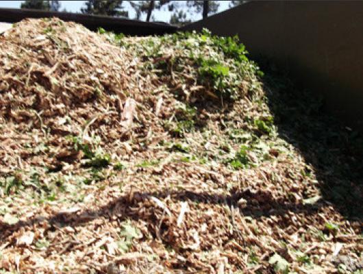 Aspiration feuilles